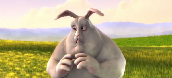 Big Buck Bunny Picture 3